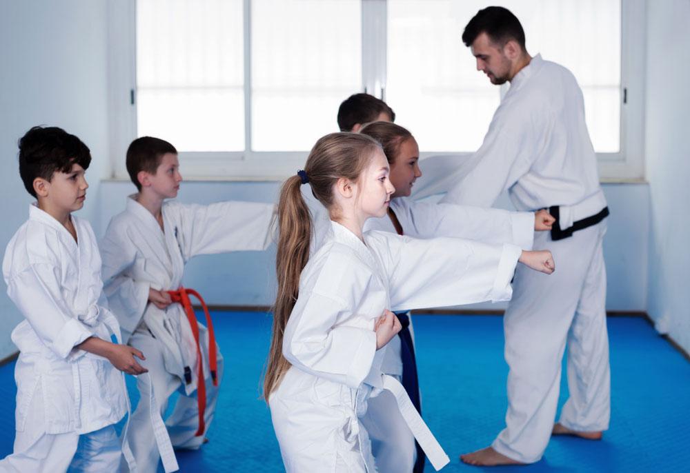 Martial Arts Classes0
